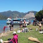 Jacobs Bay, Pelorus Sound, Marlborough