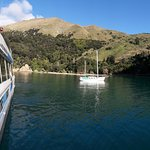 A favourite spot in the Marlborough Sounds