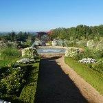 Une vue d une partie du jardin