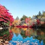 Kumoba Pond Photo