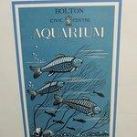 Basement aquarium