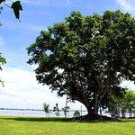 Foto Edison Park