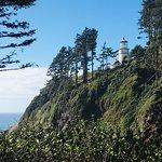 صورة فوتوغرافية لـ Heceta Head Lighthouse