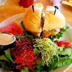 Halibut Sandwich and Salad - Wonderful!