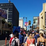 View on Sunset Blvd and Walk of Fame