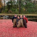 October 2018 Cranberry Bog