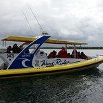 Port Jet's Wave Rider