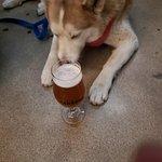Bilde fra Fourteen Cannons Brewery