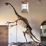 Foto Museum of Northern Arizona