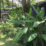 Foto de Aramsa ~ The Garden Spa