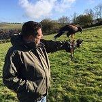 North Devon Hawk Walks Photo