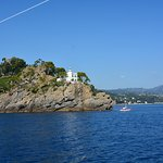 Φωτογραφία: Area Marina Protetta Portofino