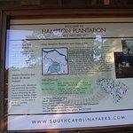 Hampton Plantation State Historic Site照片