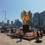 Фотография Golden Bauhinia Square