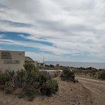 Loberia de Punta Loma Photo