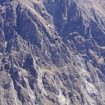 Photo of Condor's Cross