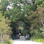 Фотография Hotokuninomiya Shrine