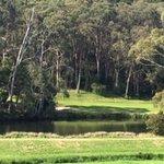Mount Lofty Golf Club照片