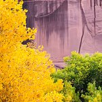 Canyon de Chelly National Monument 이미지