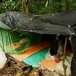 Foto van Bukit Lawang Adventure
