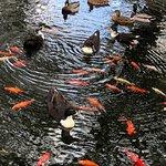 Foto de Big Spring Park