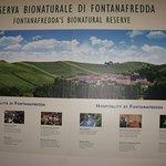 Fontanafredda의 사진