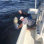 ภาพถ่ายของ Boca Grande Fishing Charters- Capt Chuck Jenks