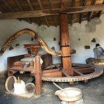 Bild från Museo Agricola el Patio