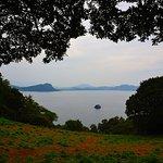 Foto de Nokonoshima Island