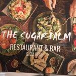 Photo of The Sugar Palm