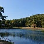 صورة فوتوغرافية لـ Motsuji Temple