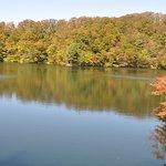 青池の写真