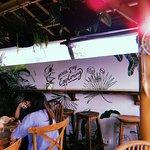 Shelter Baliの写真