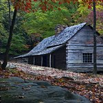 Historic Ogle Log Cabin Photo