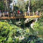 Photo of Yildiz Park