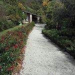 Photo of Agriturismo Perli