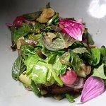 Summer Vegetable Salad (radish, zucchini, mushroom, herbs)