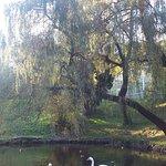 Fotografie: Stryisky Park