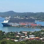 JJ Escape Roatan Tours