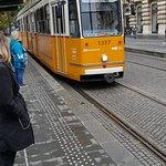Tram Number 2照片