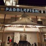 Ảnh về Paddlefish