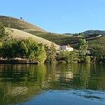 Foto van Magnífico Douro