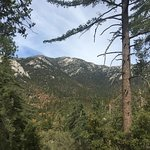Photo de Mount San Jacinto State Park and Wilderness