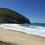 Foto di Punta Lobos