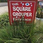 Foto de Square Grouper