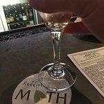 Foto de Meddlesome Moth