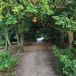 Φωτογραφία: Botanical Garden