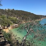 Photo of Manly Scenic Walkway