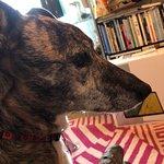 Foto de Thewitchez Photo Design Cafe Bar