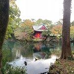 井の頭恩賜公園の写真